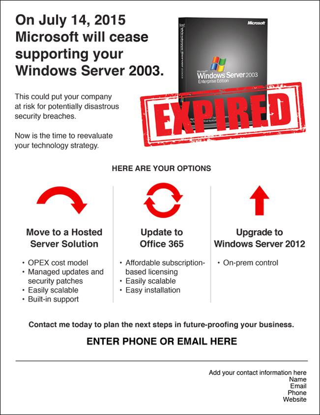 Microsoft Windows 2003 Customer Flyer