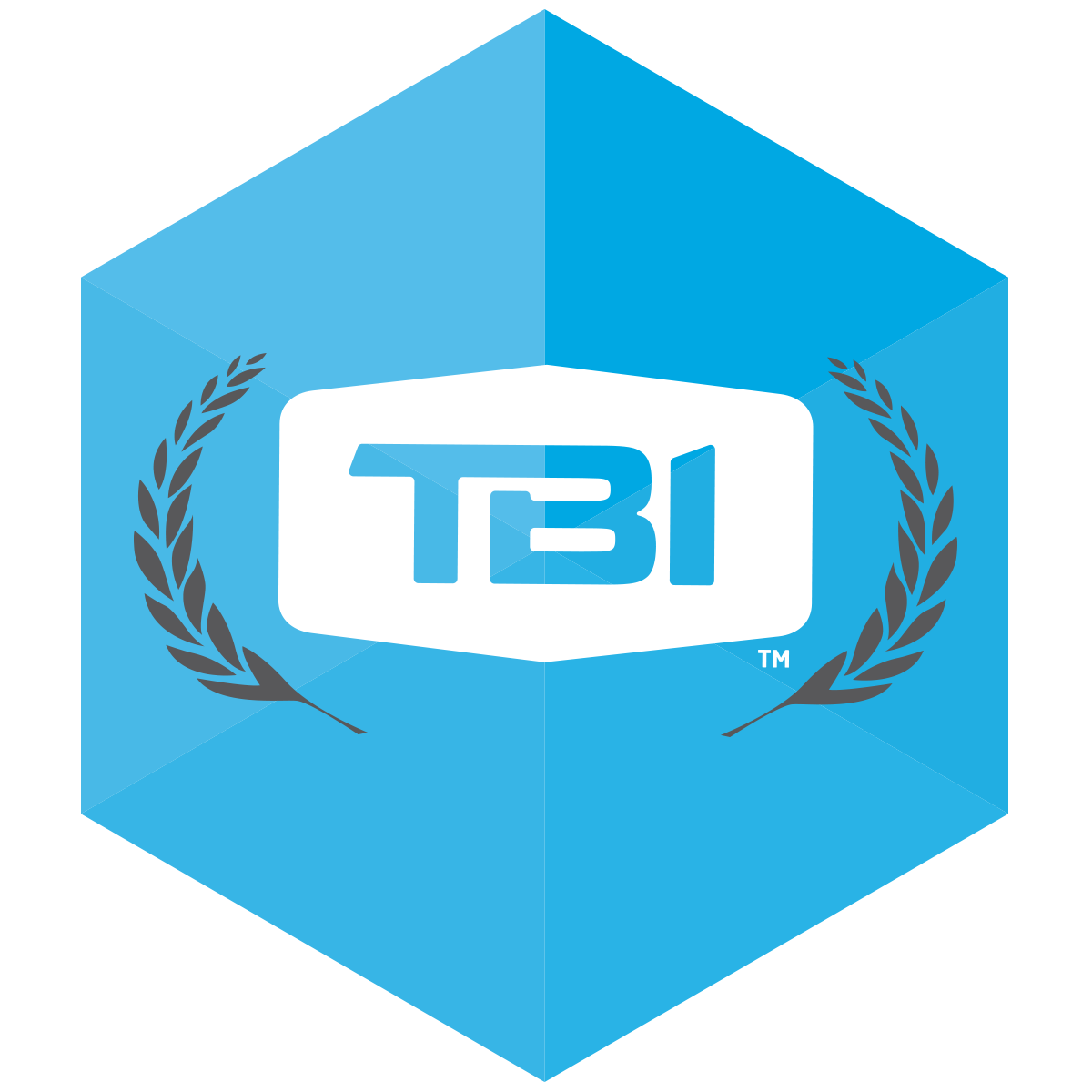 icons-tbiu.png